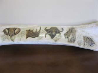 Elephant Leg Bone Scrim Shaw