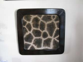 Picture Frames with animal Skin Insert