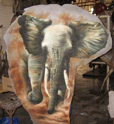 Elephant Ear Stretched on Borad and Painted