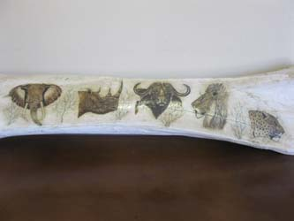 Leg Bone Scrim Shaw (4)